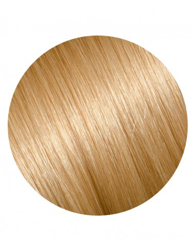 Extensii Coada De Lux Blond Piersica 26