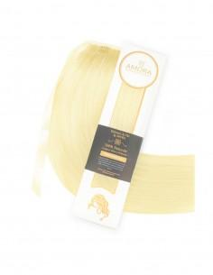 Extensii Coada Platinum Blond Deschis Auriu 22