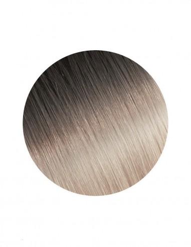 Extensii Tresa Platinum Ombre 2/PLA